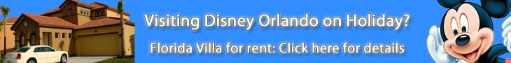 Luxury 4 bedroom villa for rent in the Disney Orlando Florida area.